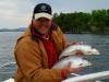 Two 4lb Salmon