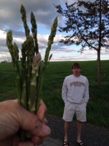 Asparagus! 005